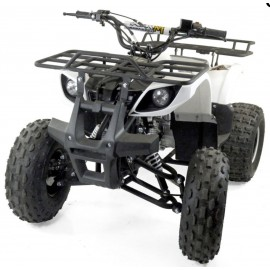 "Quad bazooka version ""toronto"" chassis xl"